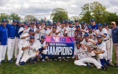 Chargers Baseball Wins NE-10 Championship