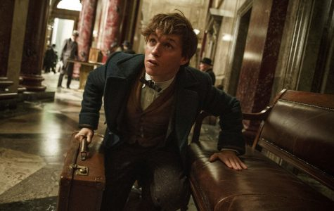 Fantastic Beasts and Where to Find Entertainment