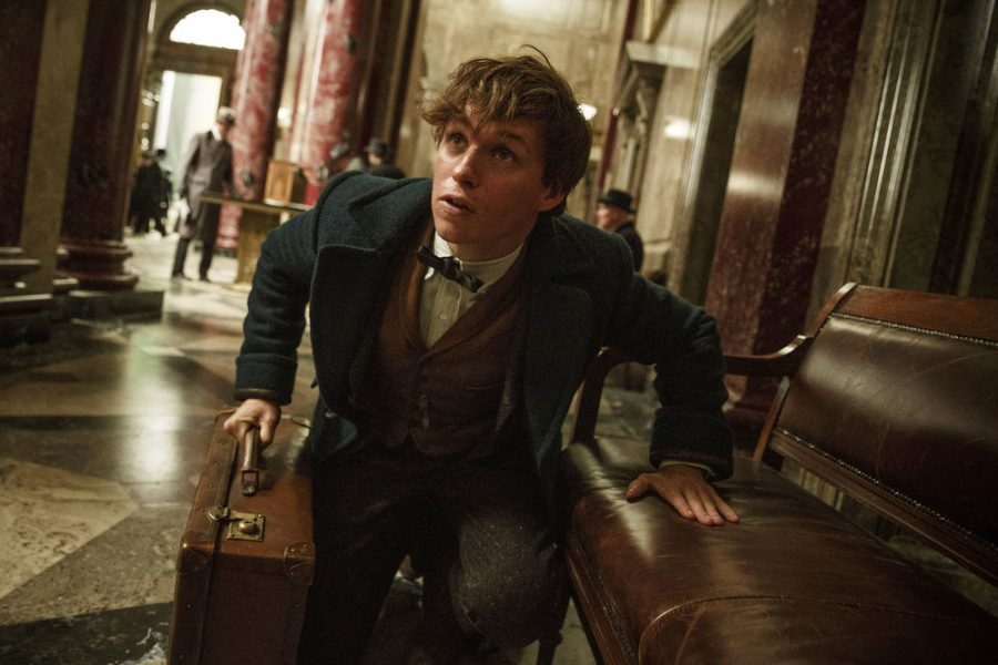 This+image+released+by+Warner+Bros.+Entertainment+shows+Eddie+Redmayne+in+a+scene+from%2C+%22Fantastic+Beasts+and+Where+to+Find+Them.%22+%28Jaap+Buitendijk%2FWarner+Bros.+via+AP%29