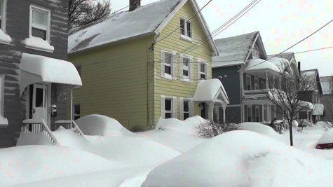 Snow Removal: No Removal