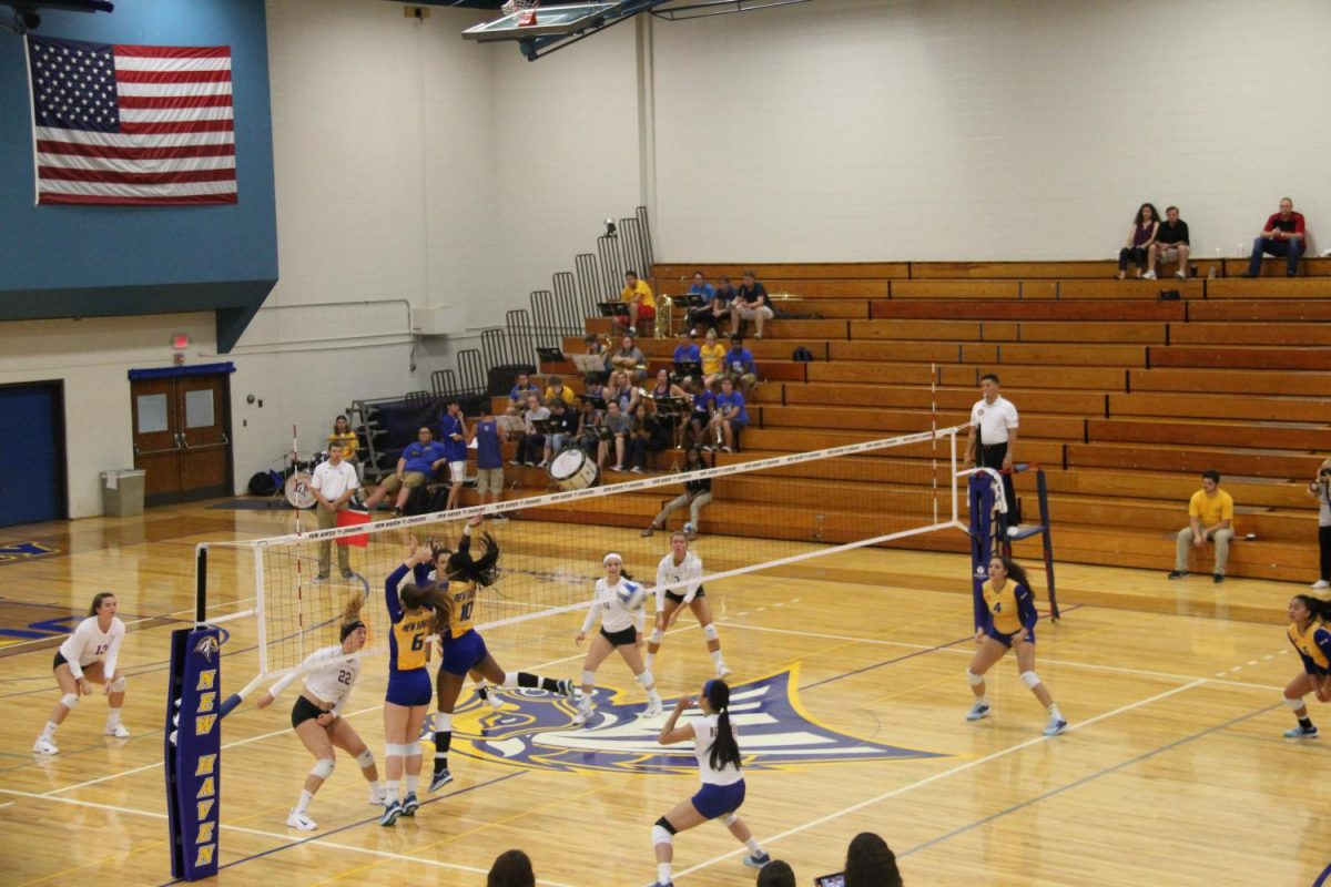 Volleyball Continues to Roll Through NE-10