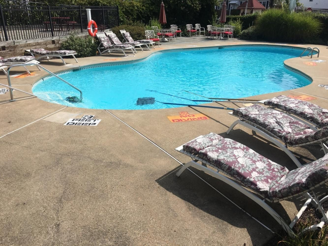 Forest Hills Pool Opens to Residents