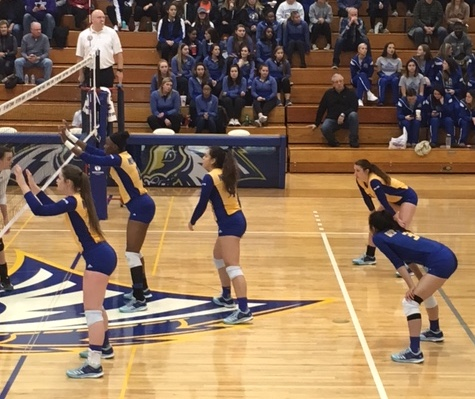 Women's Volleyball Moves One Step Closer to NE-10 Title