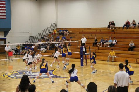Women's Volleyball Heads to Championship Tournament with Qualifying Win