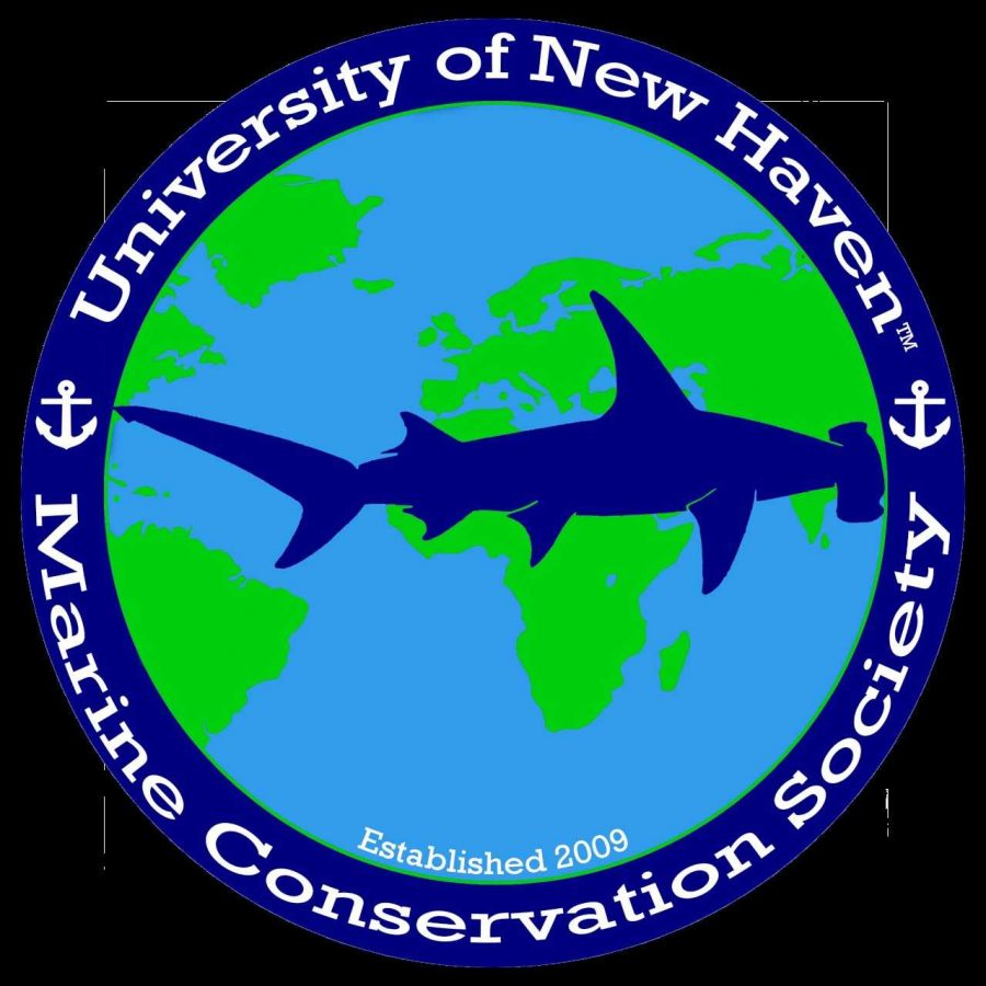 Marine Biology Club Becomes Marine Conservation Society