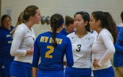 Volleyball Loses in East Region Semifinal