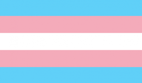 University Celebrates Trans Awareness Week