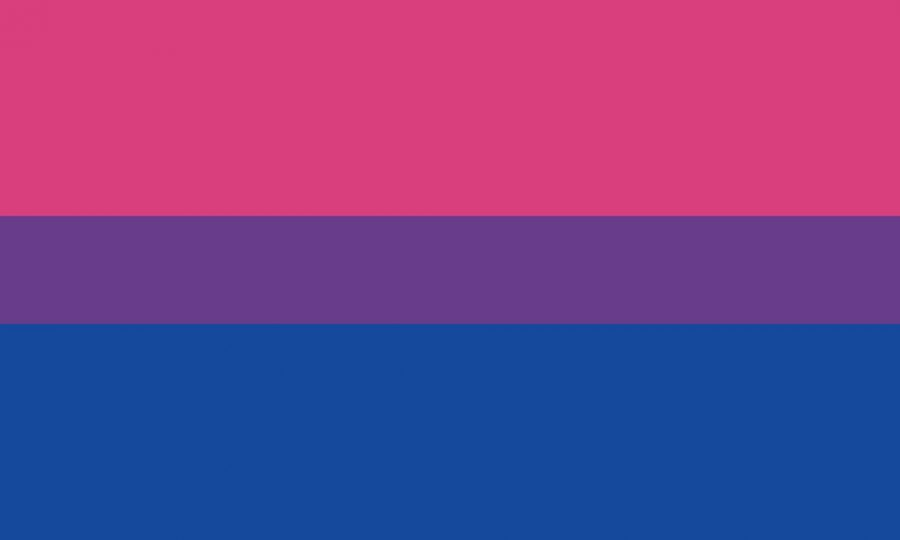 Bisexuality Isn't All About the Sex
