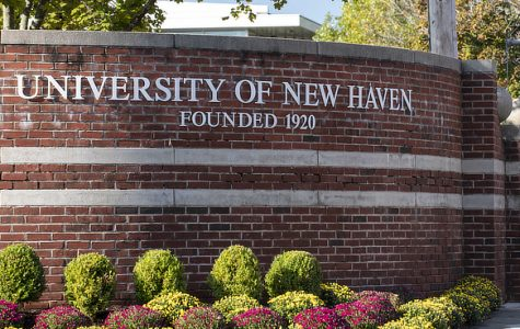 Students Respond to Internal Hire of Chief Diversity Officer